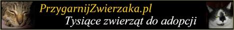 PrzygarnijZwierzaka.pl - Tysi�ce zwierz�t do adopcji